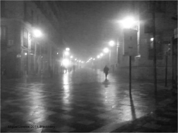 NIEBLA-M Lorente-2011