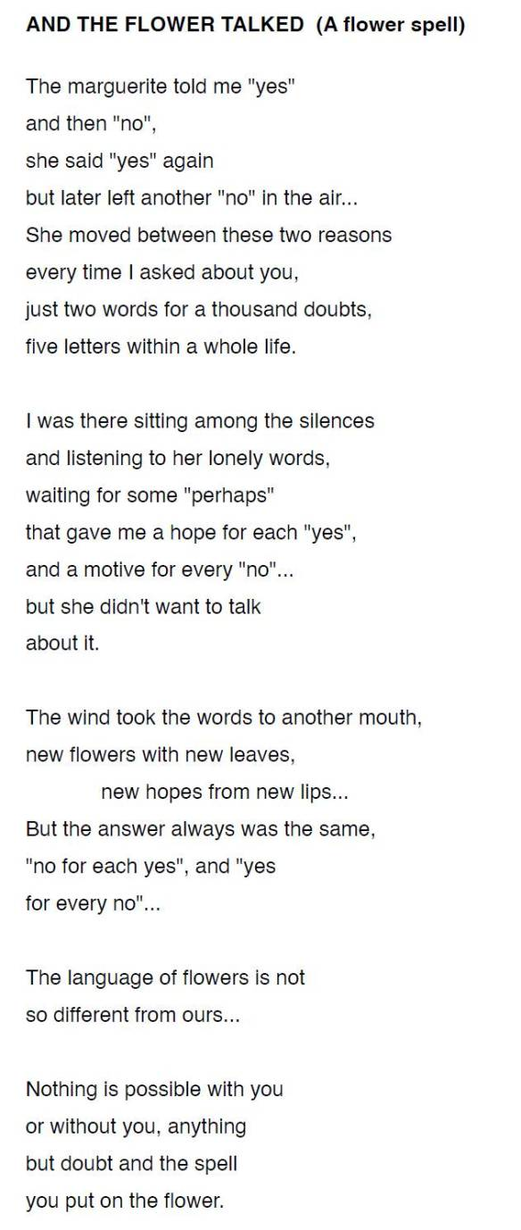 AND THE FLOWER TALKED-MLA-P