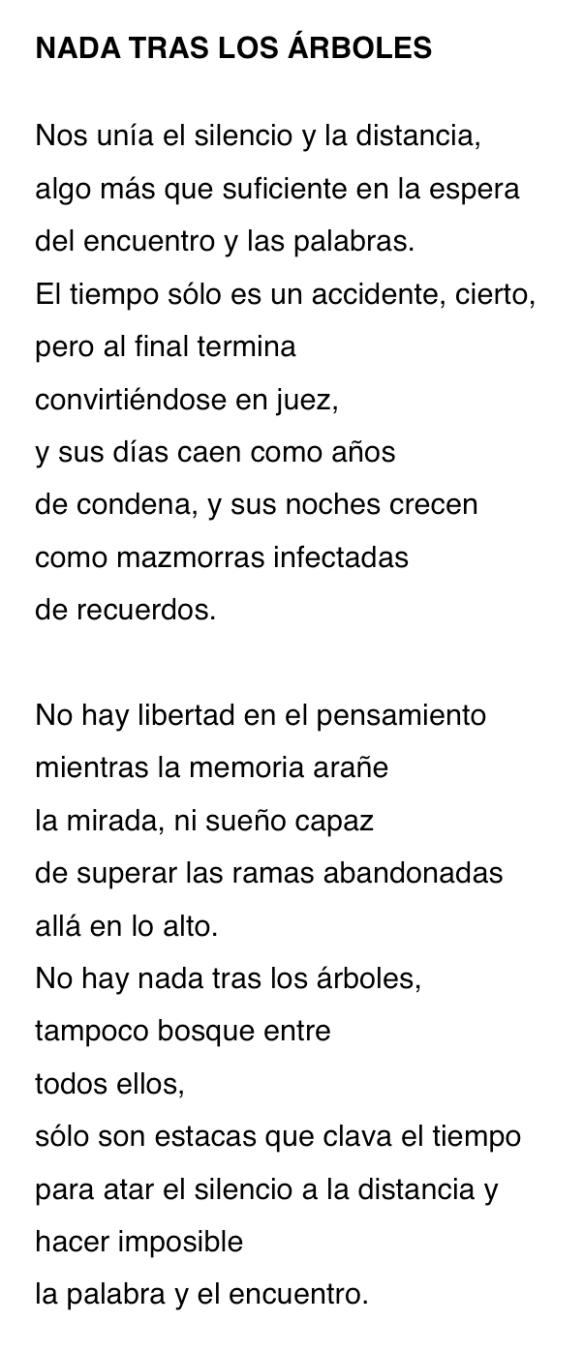 NADA TRAS LOS ARBOLES-P